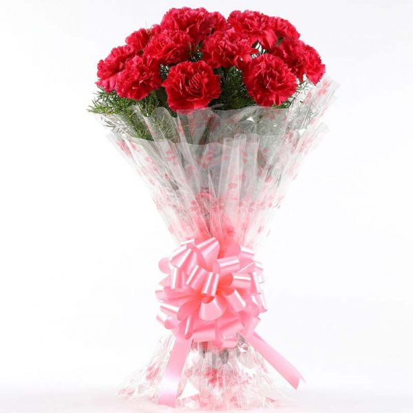 12 red carnation wrapped in cellophane and tied with pink ribbon