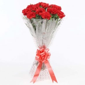 12 Red carnations wrapped in cellophane and tied with red ribbon