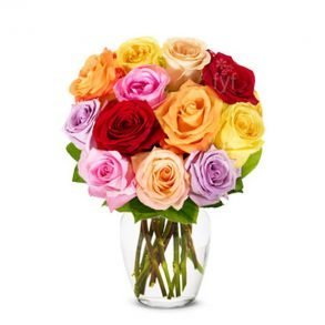 Colourful roses in glass vase
