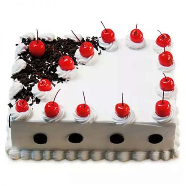 Square shaped black forest cake decorated with cherries and black chocolate crust on top