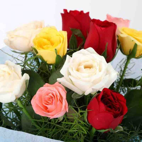 12 mixed colored roses with green leaves