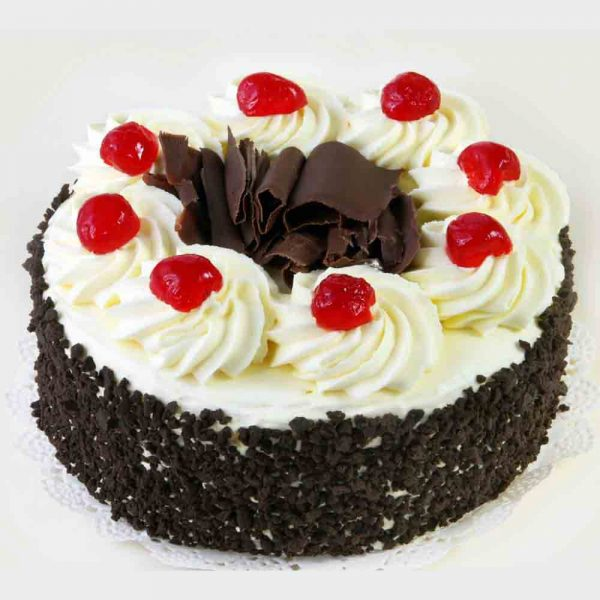 Round shaped black forest cake with chocolate chips on side and red cherries on top
