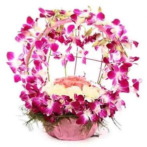 Basket of 12 orchids, 10 white carnation and 6 pink roses
