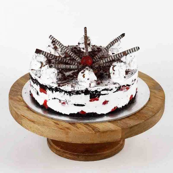 Designer round shaped chocolate cake decorated with white cream, chocolate powder and chocolate sticks
