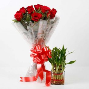 10 red roses wrapped in cellophane and tied with red ribbon, and bamboo plants in square glass vase