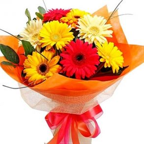Mixed coloured gerberas wrapped with orange paper and tied with red ribbon