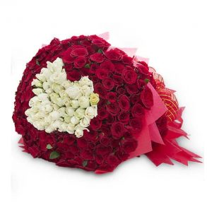 Bunch of red and white roses wrapped in red paper