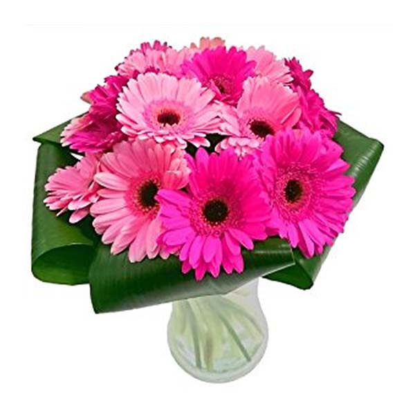 Pink gerberas and green leaves in a round glass vase