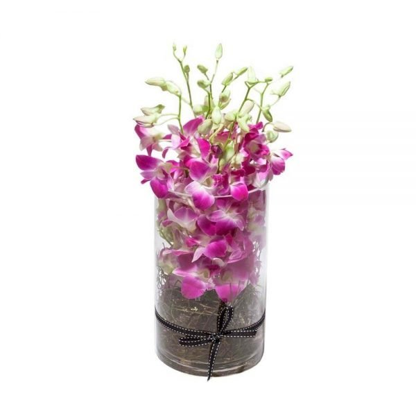 Purple orchids in round glass vase
