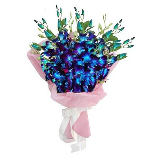 Blue orchids wrapped in pink paper and tied with white ribbon
