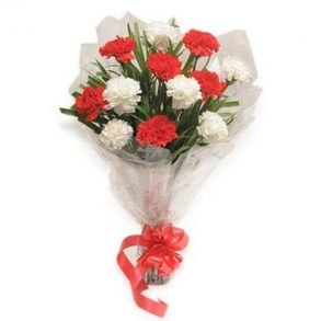 Red & white gerberas wrapper in cellophane and tied with red ribbon