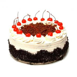 Round shaped black forest cake decorated with red cherries and chocolate crust
